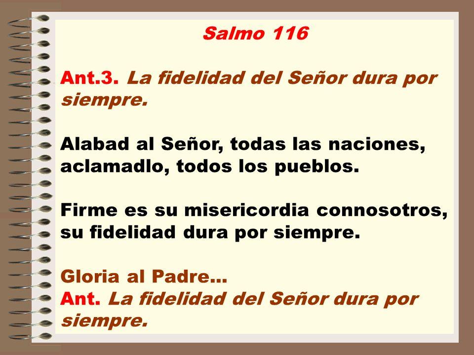 Salmo 116 Ant.3. La fidelidad del Señor dura por siempre. Alabad al Señor, todas las naciones, aclamadlo, todos los pueblos. Firme es su misericordia