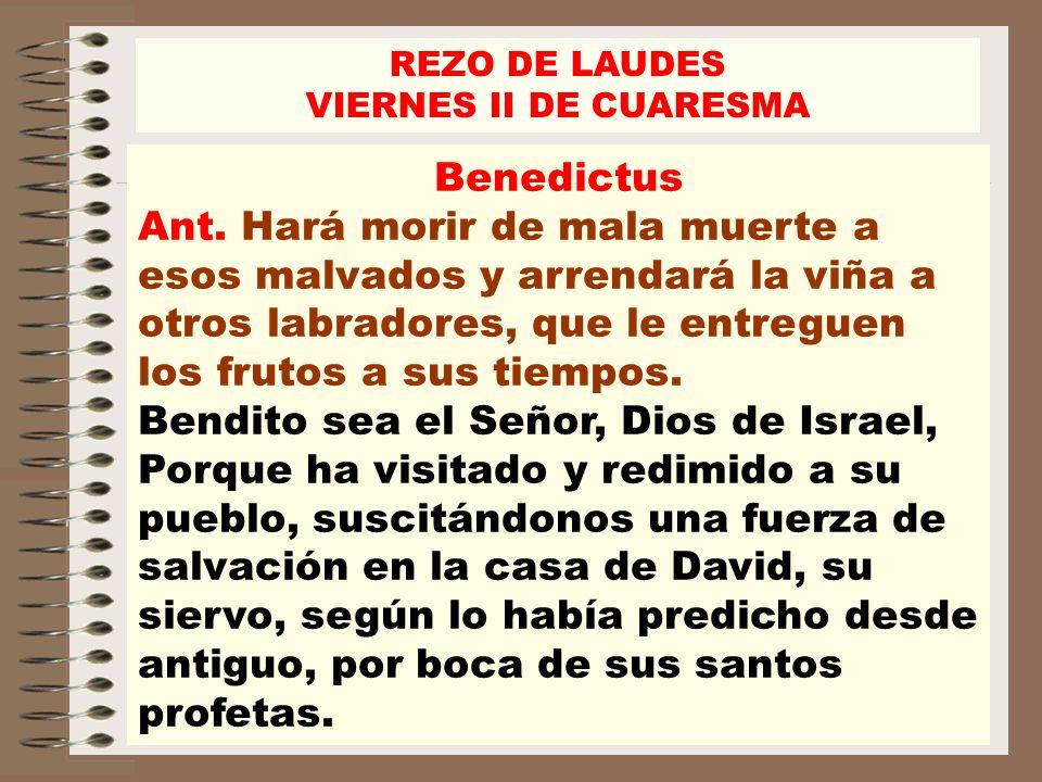 Benedictus Ant. Hará morir de mala muerte a esos malvados y arrendará la viña a otros labradores, que le entreguen los frutos a sus tiempos. Bendito s