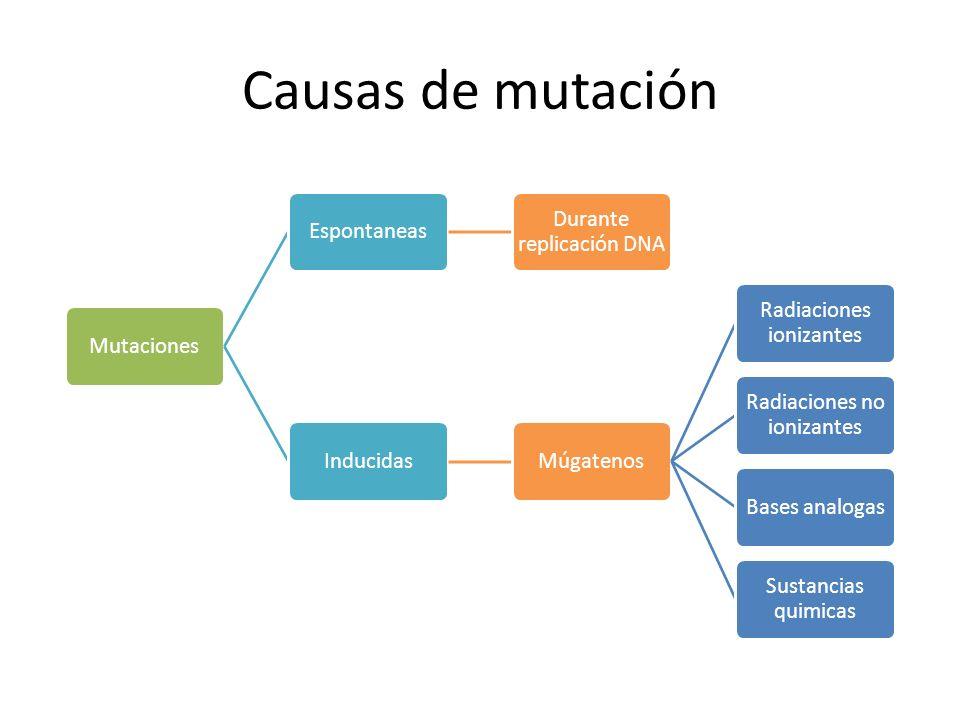 Enfermedad de Huntington (HD) Desorden de poliglutamina Expansión inestable – CAG (Ac.