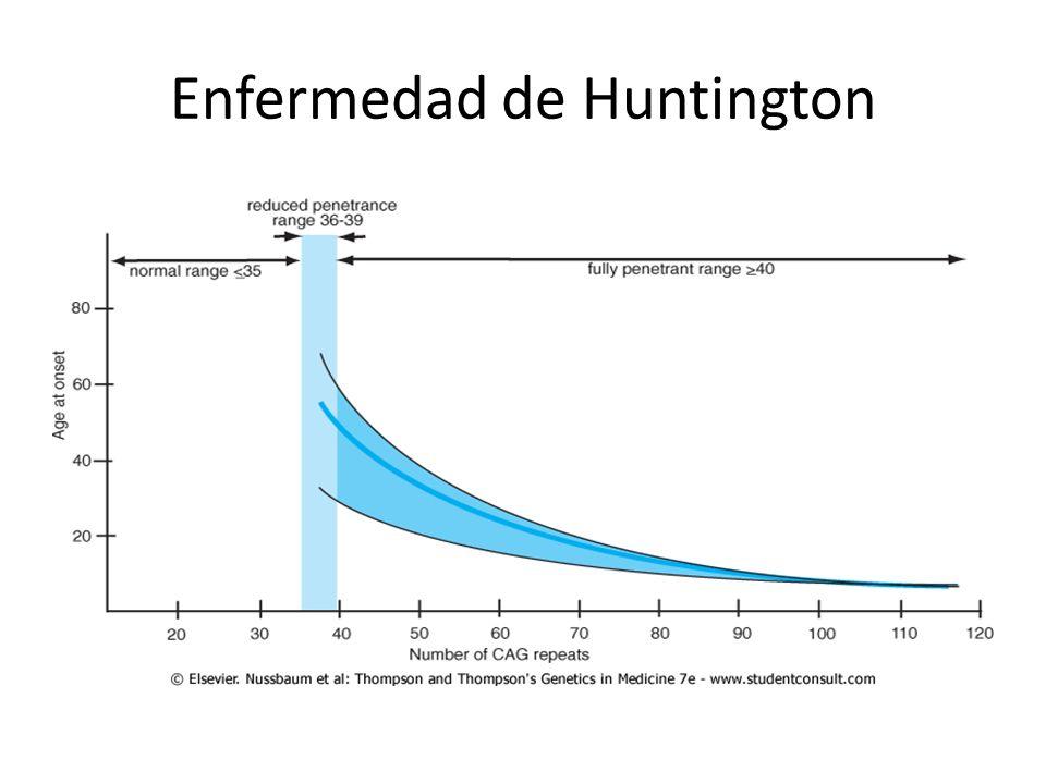 Enfermedad de Huntington (HD) Fenotipo – Anormalidades motoras Corea Distonía – Cambios de personalidad – Perdida gradual del conocimiento – Muerte