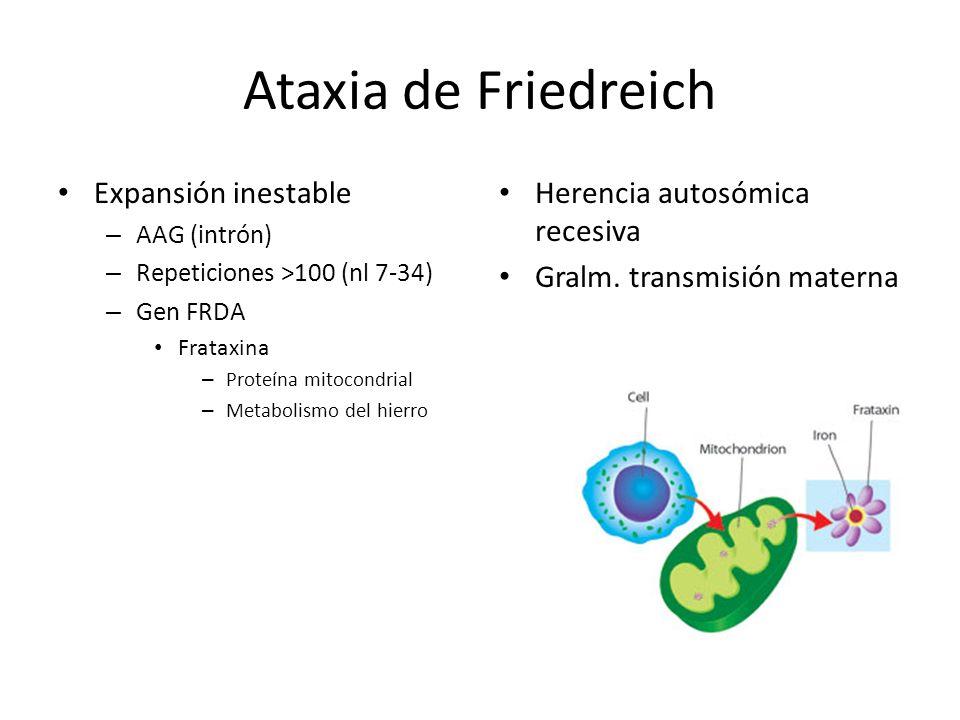 Ataxia de Friedreich Fenotipo – Inicio infancia – Incoordinación mov.