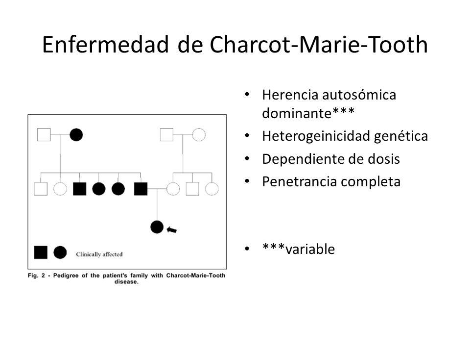 Enfermedad de Charcot-Marie-Tooth Fenotipo – Debilidad y atrofia distal – Alteraciones sensoriales – Alteración marcha – Pie gota – Deformidades pie – Pérdida del equilibrio – Hipo o arreflexia