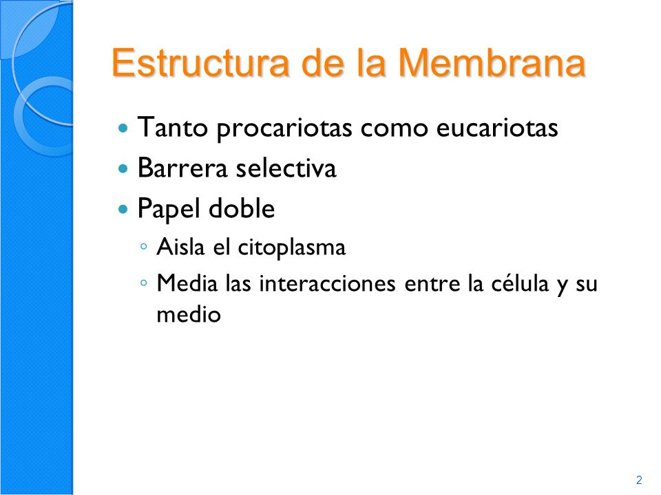2 Estructura de la Membrana Tanto procariotas como eucariotas Barrera selectiva Papel doble Aisla el citoplasma Media las interacciones entre la célula y su medio