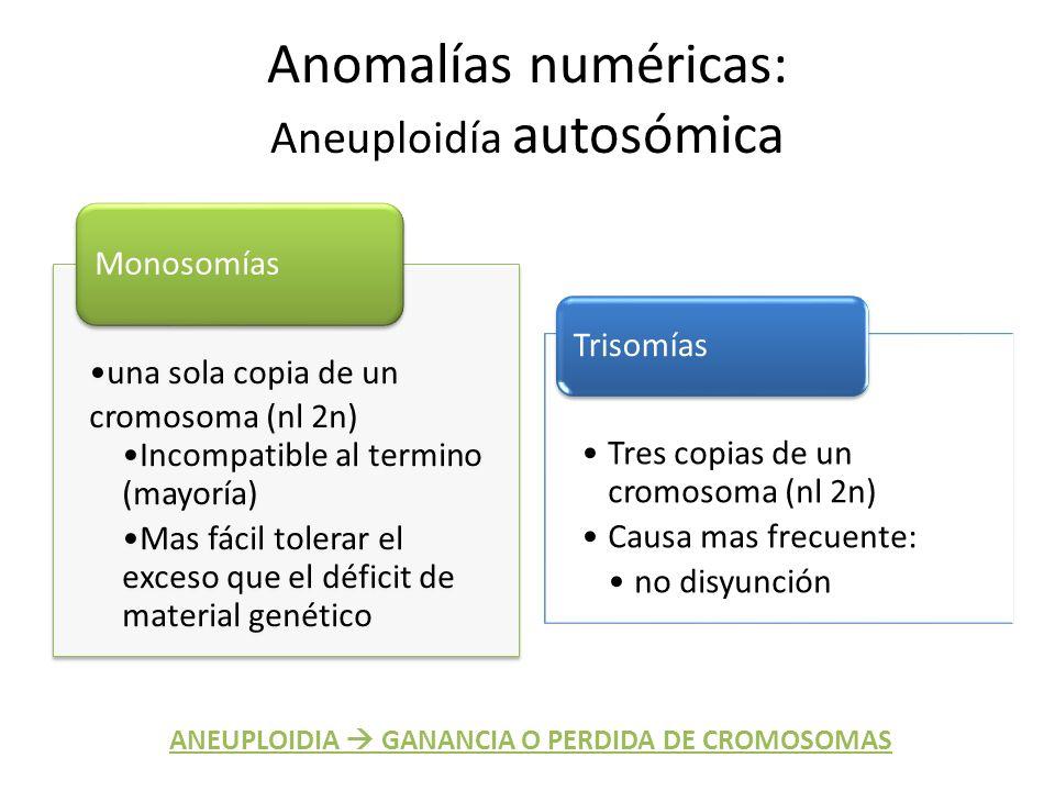 Anomalías numéricas: Aneuploidía autosómica una sola copia de un cromosoma (nl 2n) Incompatible al termino (mayoría) Mas fácil tolerar el exceso que e