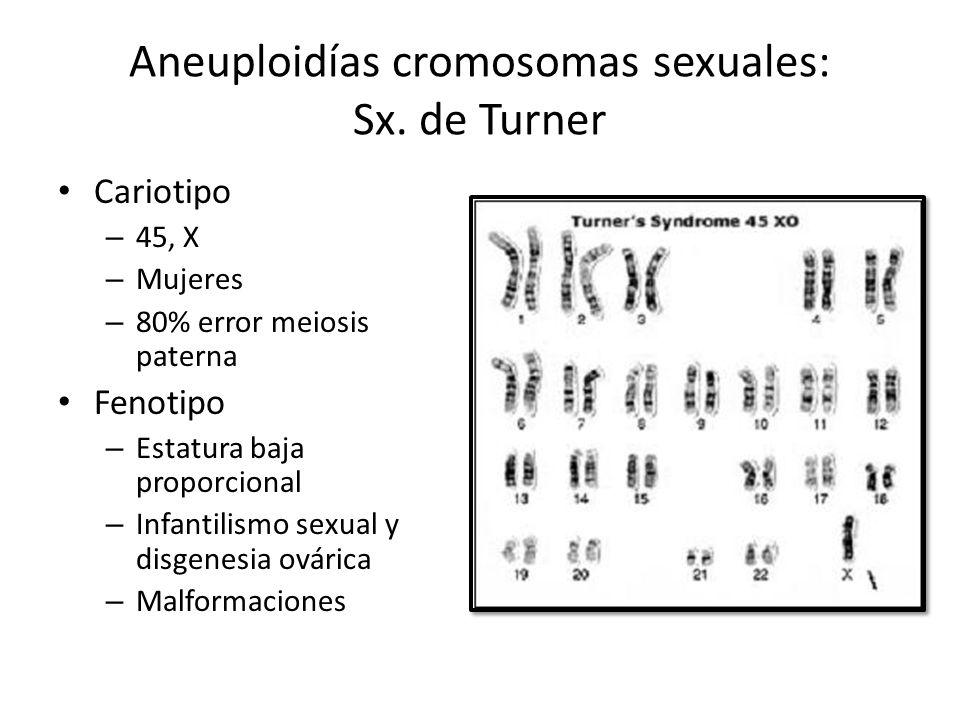 Aneuploidías cromosomas sexuales: Sx. de Turner Cariotipo – 45, X – Mujeres – 80% error meiosis paterna Fenotipo – Estatura baja proporcional – Infant