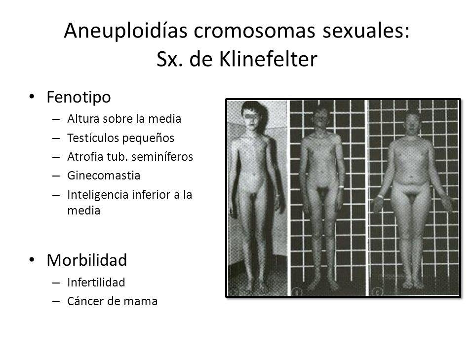 Fenotipo – Altura sobre la media – Testículos pequeños – Atrofia tub. seminíferos – Ginecomastia – Inteligencia inferior a la media Morbilidad – Infer