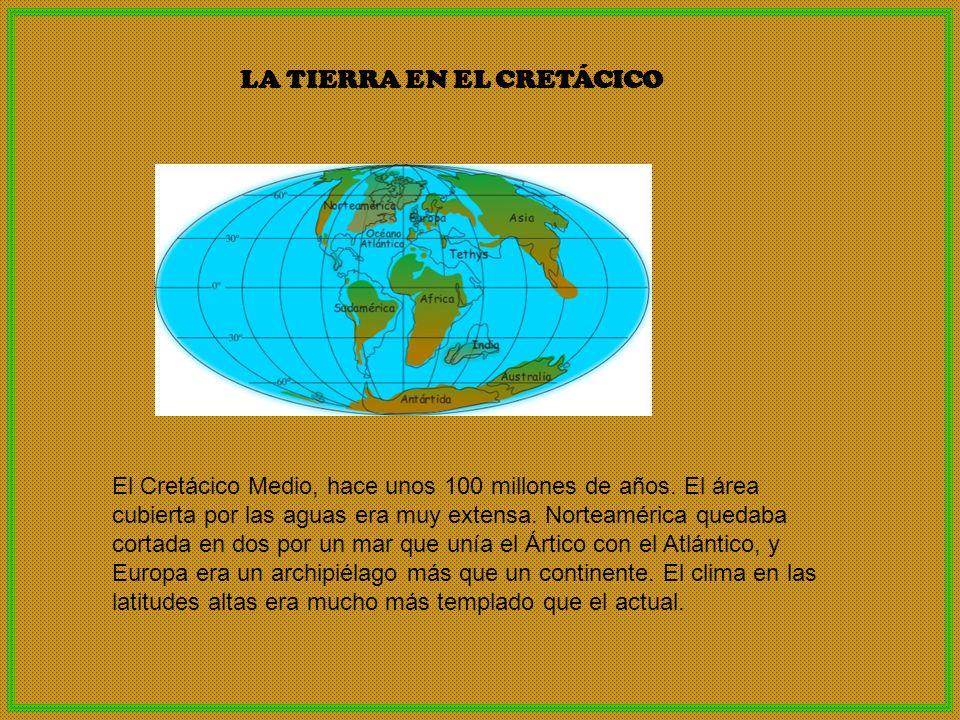 CANTABRIA EN EL CRETÁCICO Territorio Rábago-El Soplao (Cantabria) Hace 110 millones de años, parte de la Península Ibérica estaba sumergida bajo un cálido mar tropical.