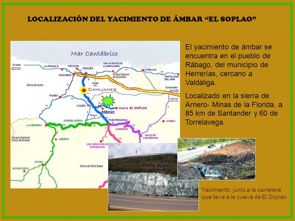 LOCALIZACIÓN DEL YACIMIENTO DE ÁMBAR EL SOPLAO El yacimiento de ámbar se encuentra en el pueblo de Rábago, del municipio de Herrerías, cercano a Valdá