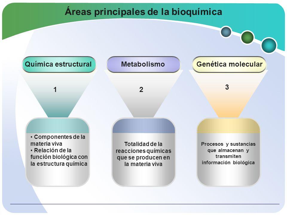 BIOQUIMICA CIENCIA INTERDISCIPLINAR Se relacionan Química orgánica Biofísica Nutrición Microbiología FisiologíaGenética Biología Molecular Investigación Médica