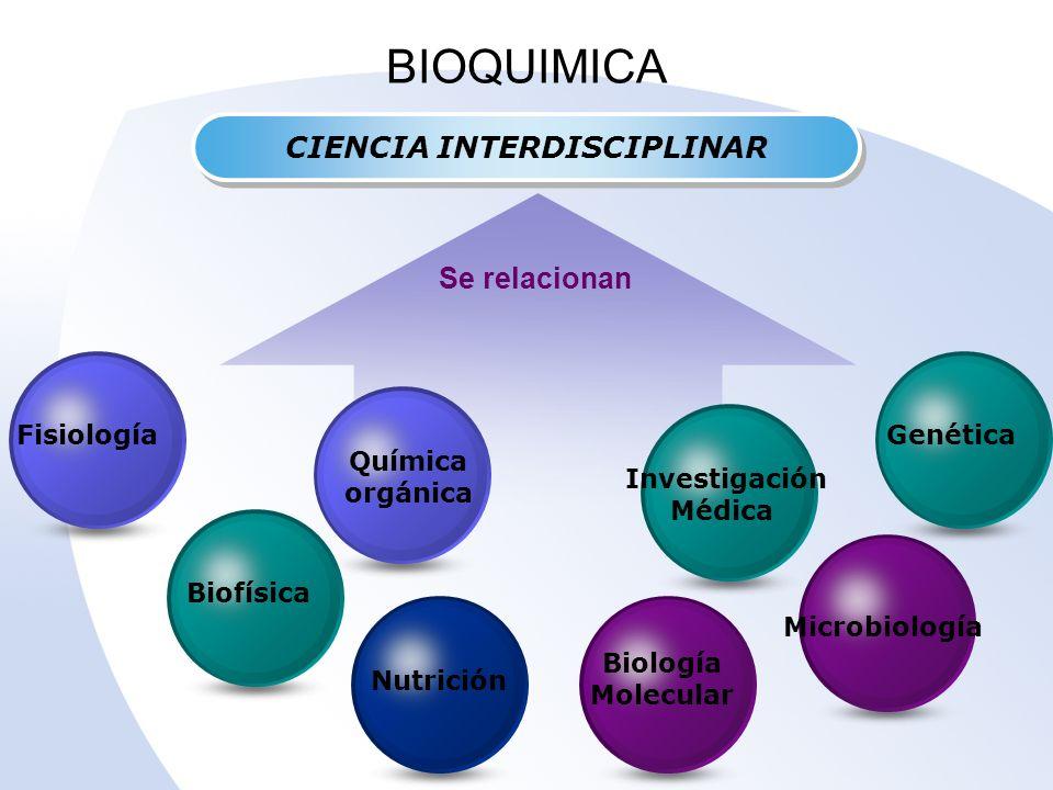Quimica Organica Experimental qu Mica Org Nica Biof Sica