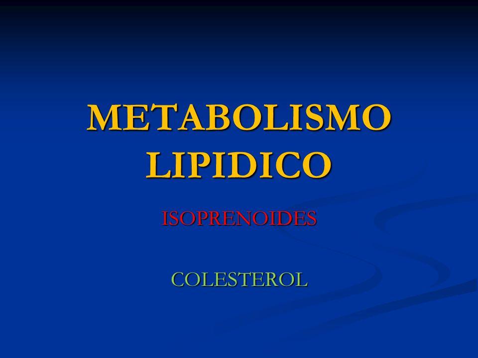 METABOLISMO LIPIDICO ISOPRENOIDESCOLESTEROL