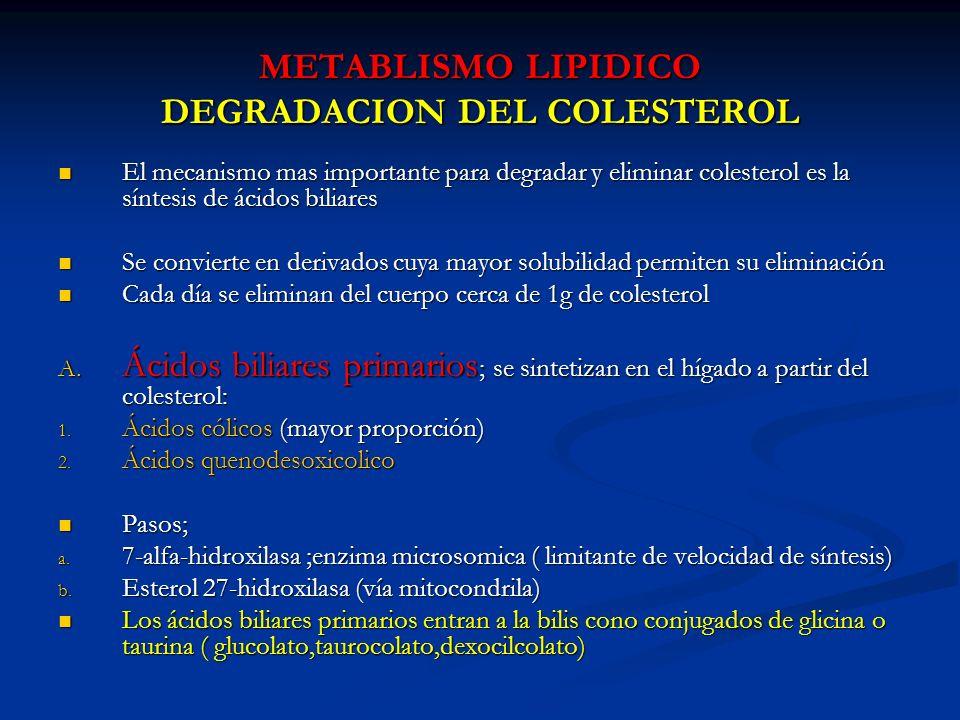 METABLISMO LIPIDICO DEGRADACION DEL COLESTEROL El mecanismo mas importante para degradar y eliminar colesterol es la síntesis de ácidos biliares El me