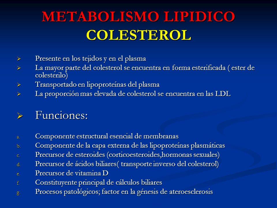 METABOLISMO LIPIDICO COLESTEROL Presente en los tejidos y en el plasma Presente en los tejidos y en el plasma La mayor parte del colesterol se encuent