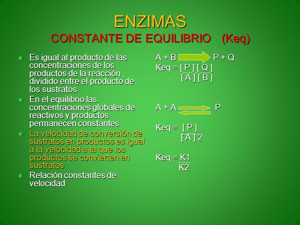 ENZIMAS CONSTANTE DE EQUILIBRIO (Keq) Es igual al producto de las concentraciones de los productos de la reacción, dividido entre el producto de los s