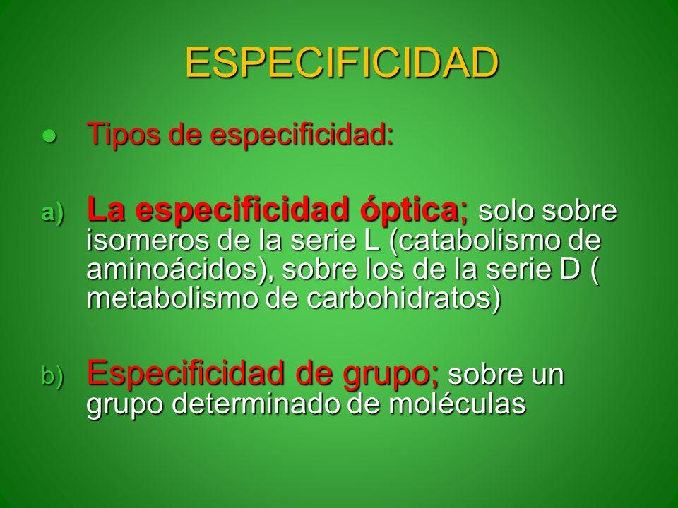 ESPECIFICIDAD Tipos de especificidad: Tipos de especificidad: a) La especificidad óptica; solo sobre isomeros de la serie L (catabolismo de aminoácido