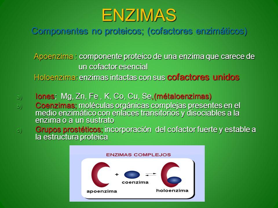 ENZIMAS Componentes no proteicos; (cofactores enzimáticos) Apoenzima : componente proteico de una enzima que carece de Apoenzima : componente proteico