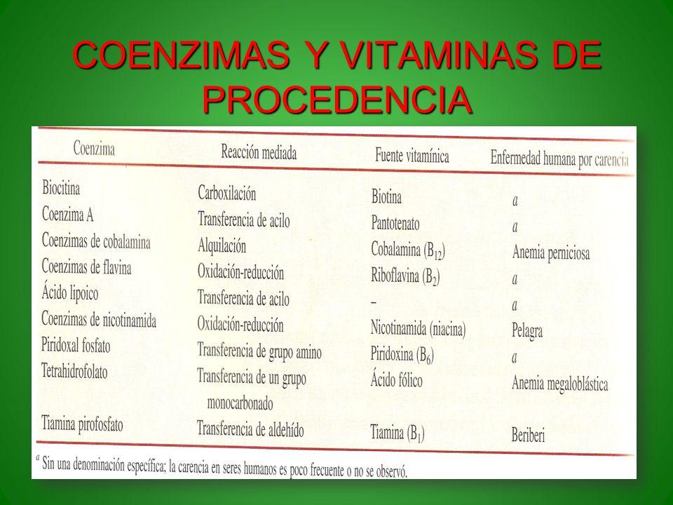 COENZIMAS Y VITAMINAS DE PROCEDENCIA