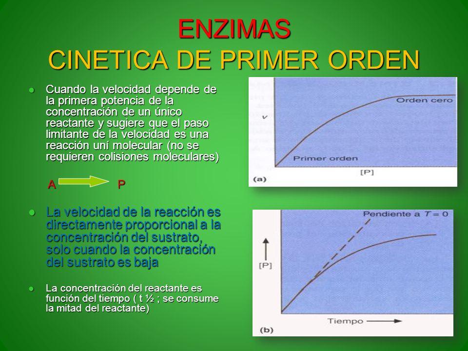 ENZIMAS CINETICA DE PRIMER ORDEN Cuando la velocidad depende de la primera potencia de la concentración de un único reactante y sugiere que el paso li