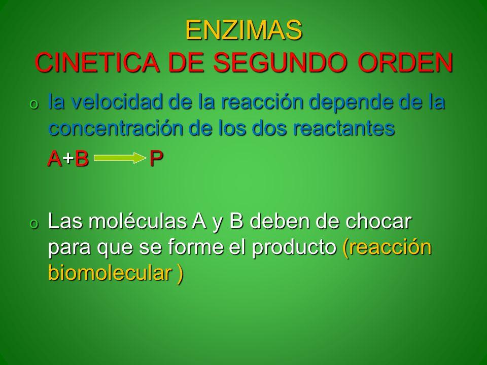ENZIMAS CINETICA DE SEGUNDO ORDEN o la velocidad de la reacción depende de la concentración de los dos reactantes A+B P A+B P o Las moléculas A y B de