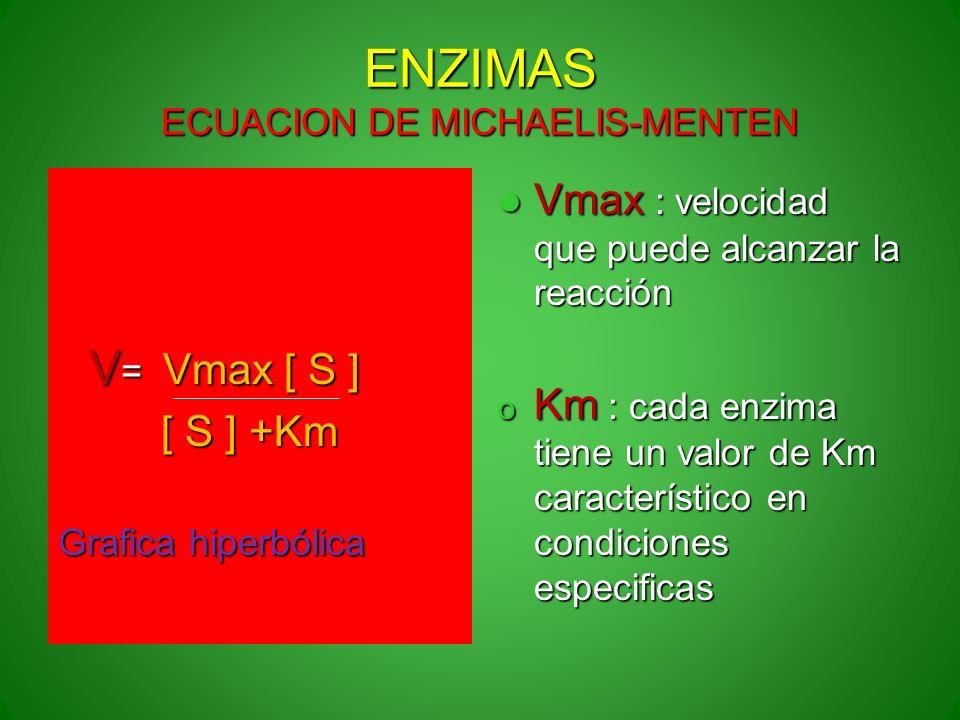 ENZIMAS ECUACION DE MICHAELIS-MENTEN V = Vmax [ S ] V = Vmax [ S ] [ S ] +Km [ S ] +Km Grafica hiperbólica Vmax : velocidad que puede alcanzar la reac
