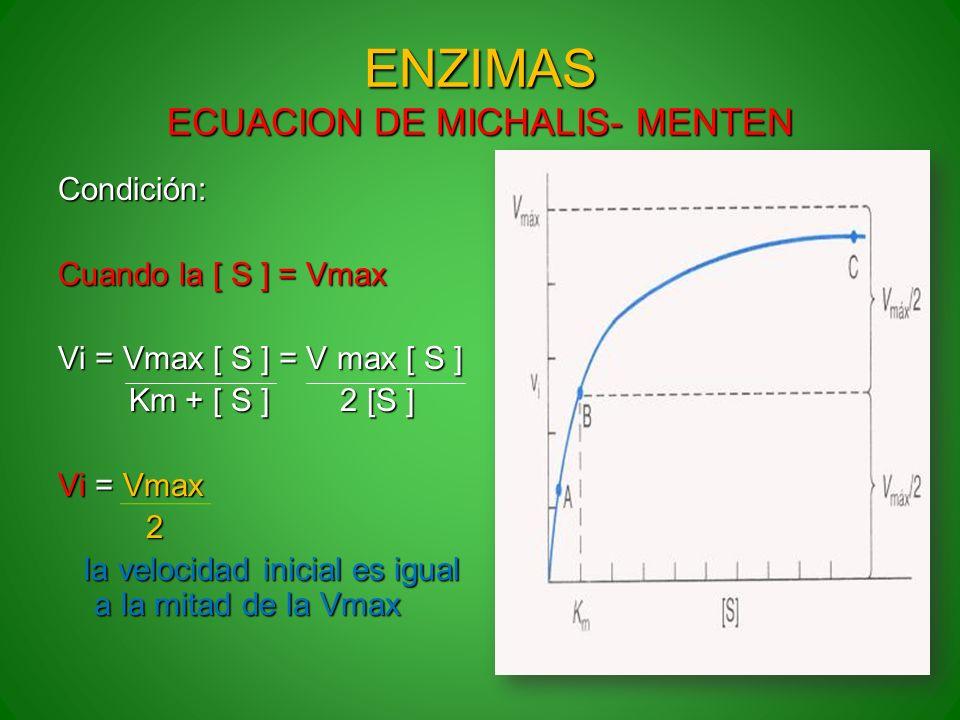 ENZIMAS ECUACION DE MICHALIS- MENTEN Condición: Cuando la [ S ] = Vmax Vi = Vmax [ S ] = V max [ S ] Km + [ S ] 2 [S ] Km + [ S ] 2 [S ] Vi = Vmax 2 l