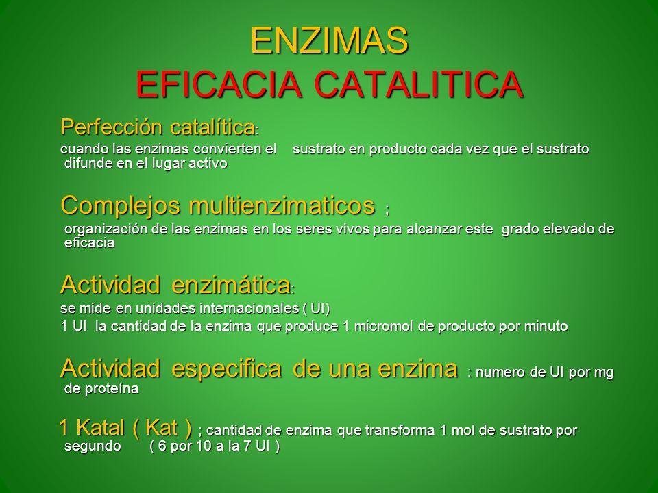 ENZIMAS EFICACIA CATALITICA Perfección catalítica : Perfección catalítica : cuando las enzimas convierten el sustrato en producto cada vez que el sust
