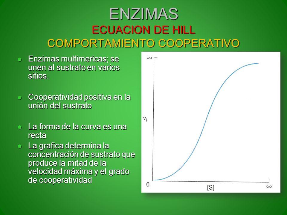 ENZIMAS ECUACION DE HILL COMPORTAMIENTO COOPERATIVO Enzimas multimericas; se unen al sustrato en varios sitios. Enzimas multimericas; se unen al sustr