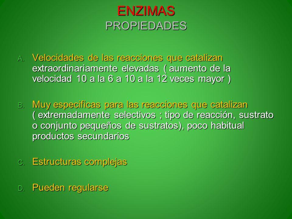 ENZIMAS PROPIEDADES A. Velocidades de las reacciones que catalizan extraordinariamente elevadas ( aumento de la velocidad 10 a la 6 a 10 a la 12 veces