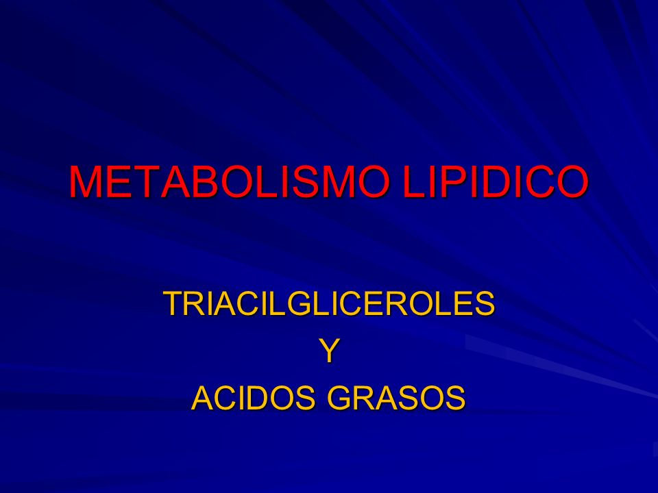 METABOLISMO LIPIDICO Fuente de energía importante Fuente de energía importante Se obtienen de la alimentación Se obtienen de la alimentación En el intestino : los triaciacilgliceroles + las sales biliares ;ácidos grasos + monogliceroles los que atraviesan la membrana plasmática del enterocito y se convierten en triacilgliceroles + apoproteinas son los quilomicrones En el intestino : los triaciacilgliceroles + las sales biliares ;ácidos grasos + monogliceroles los que atraviesan la membrana plasmática del enterocito y se convierten en triacilgliceroles + apoproteinas son los quilomicrones Los quilomicrones del intestino a la linfa y de la linfa a la sangre Los quilomicrones del intestino a la linfa y de la linfa a la sangre Los quilomocrones se retiran por células del tejido adiposo (adipositos; forma almacenamiento) Los quilomocrones se retiran por células del tejido adiposo (adipositos; forma almacenamiento)