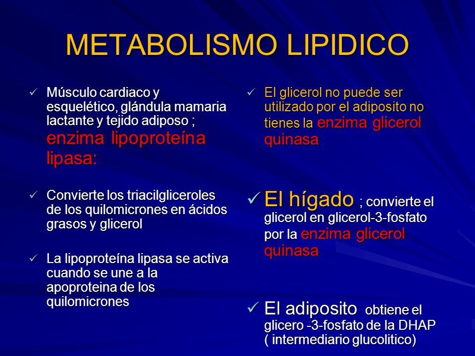 METABOLISMO LIPIDICO Músculo cardiaco y esquelético, glándula mamaria lactante y tejido adiposo ; enzima lipoproteína lipasa: Músculo cardiaco y esque