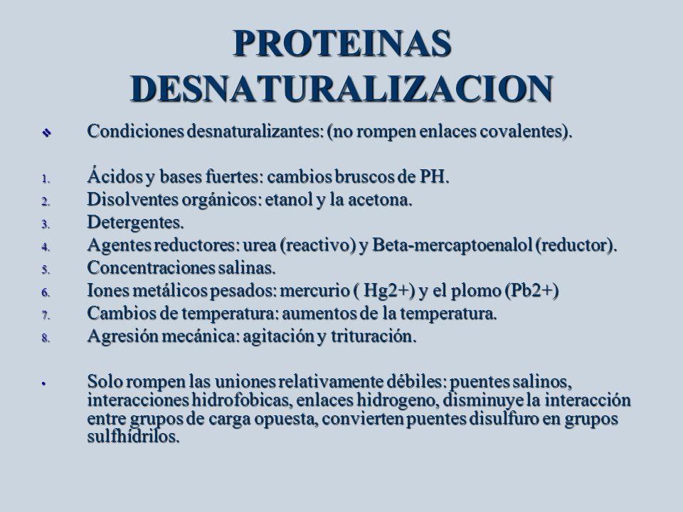 PROTEINAS DESNATURALIZACION Condiciones desnaturalizantes: (no rompen enlaces covalentes). Condiciones desnaturalizantes: (no rompen enlaces covalente