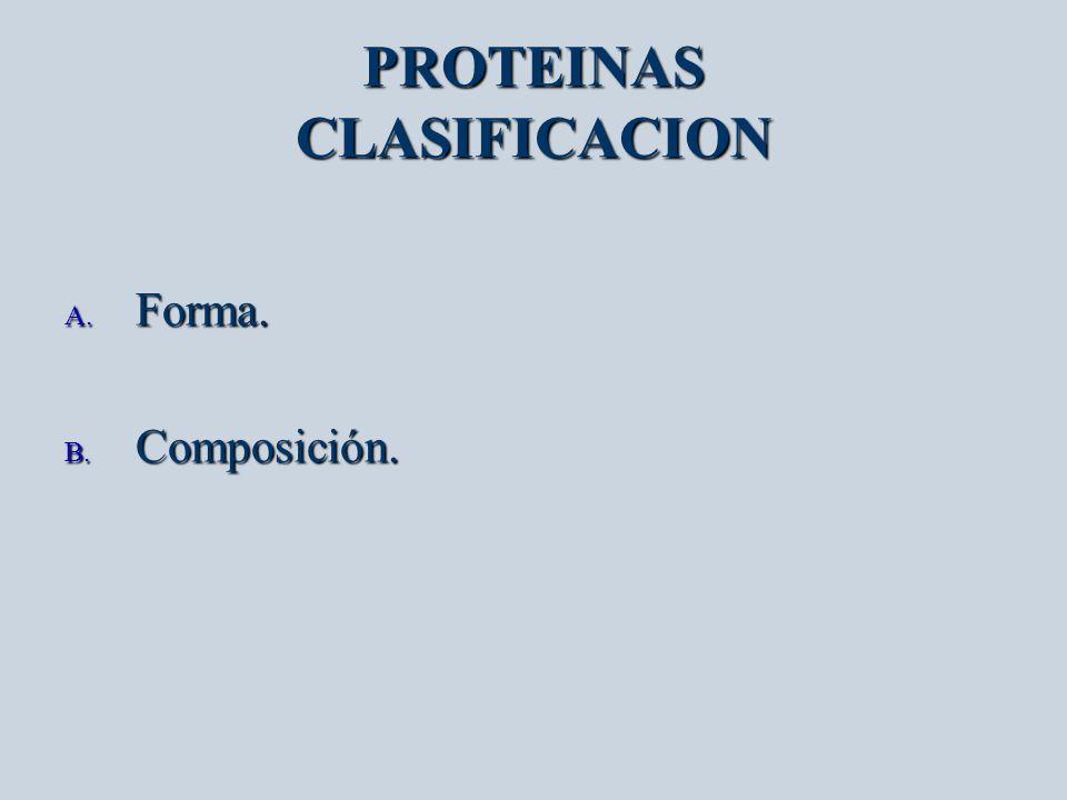 PROTEINAS CLASIFICACION A. Forma. B. Composición.