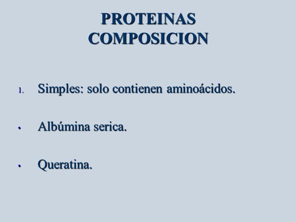 PROTEINAS COMPOSICION 1. Simples: solo contienen aminoácidos. Albúmina serica. Albúmina serica. Queratina. Queratina.