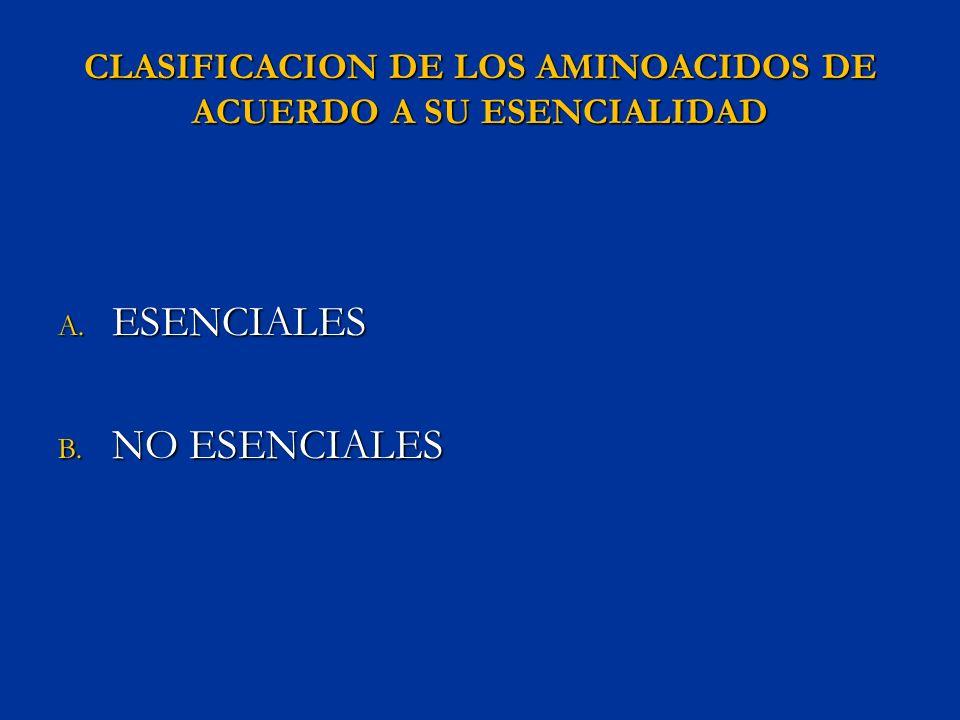 CLASIFICACION DE LOS AMINOACIDOS DE ACUERDO A SU ESENCIALIDAD A. ESENCIALES B. NO ESENCIALES