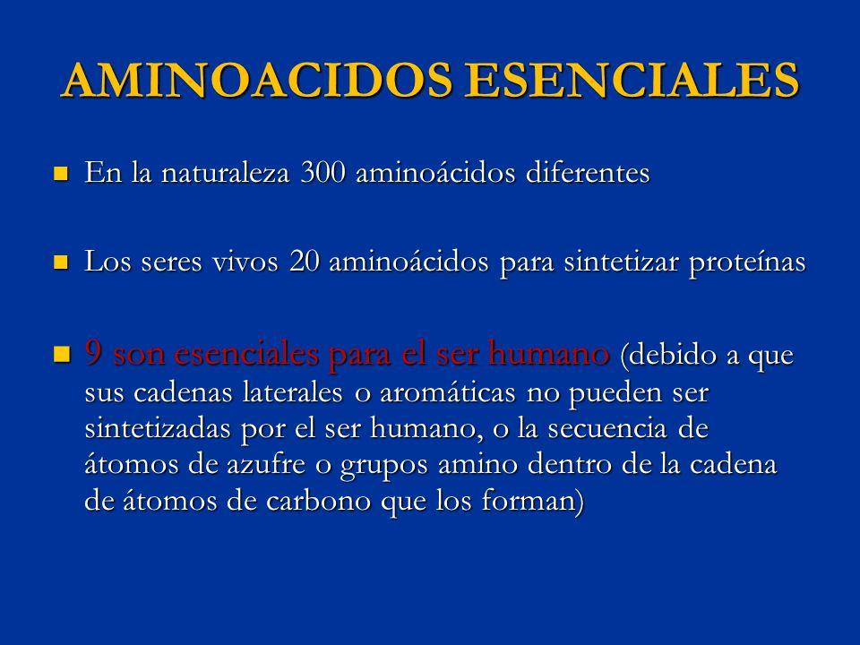 AMINOACIDOS ESENCIALES En la naturaleza 300 aminoácidos diferentes En la naturaleza 300 aminoácidos diferentes Los seres vivos 20 aminoácidos para sin