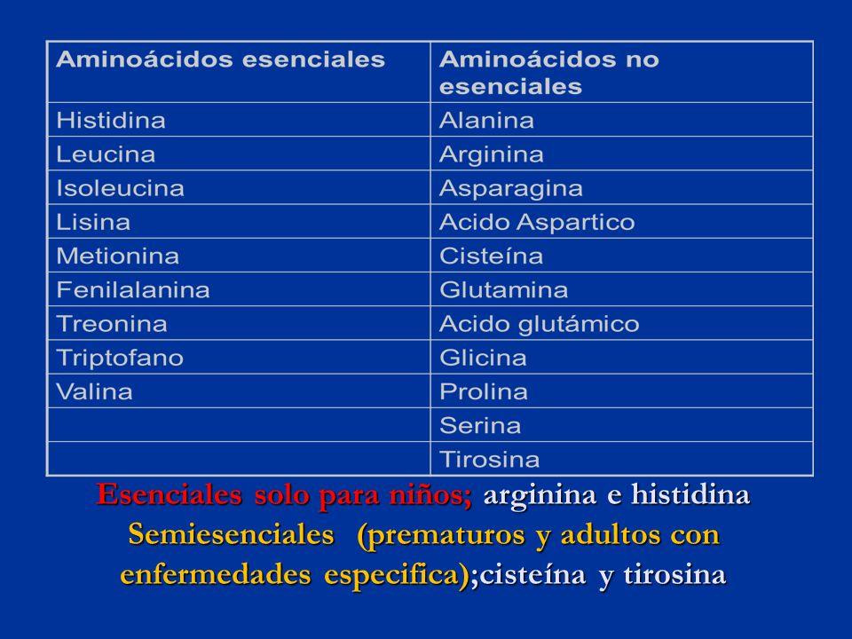Esenciales solo para niños; arginina e histidina Semiesenciales (prematuros y adultos con enfermedades especifica);cisteína y tirosina