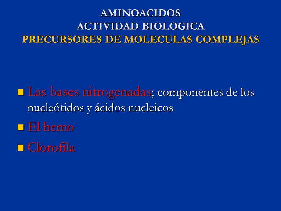 AMINOACIDOS ACTIVIDAD BIOLOGICA PRECURSORES DE MOLECULAS COMPLEJAS Las bases nitrogenadas ; componentes de los nucleótidos y ácidos nucleicos Las base