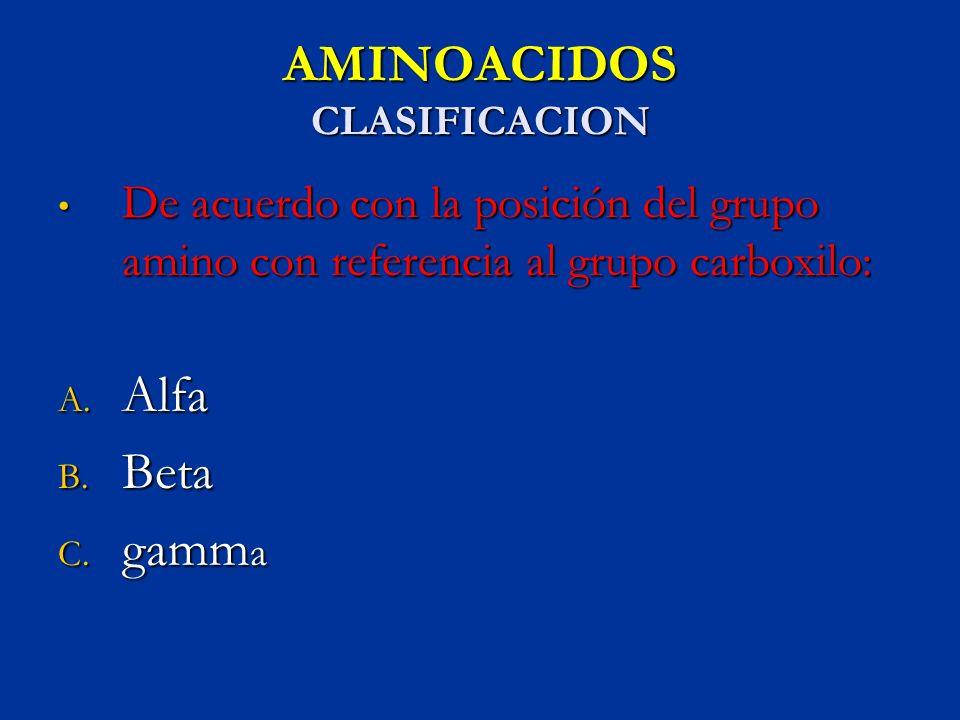 AMINOACIDOS CLASIFICACION De acuerdo con la posición del grupo amino con referencia al grupo carboxilo: De acuerdo con la posición del grupo amino con