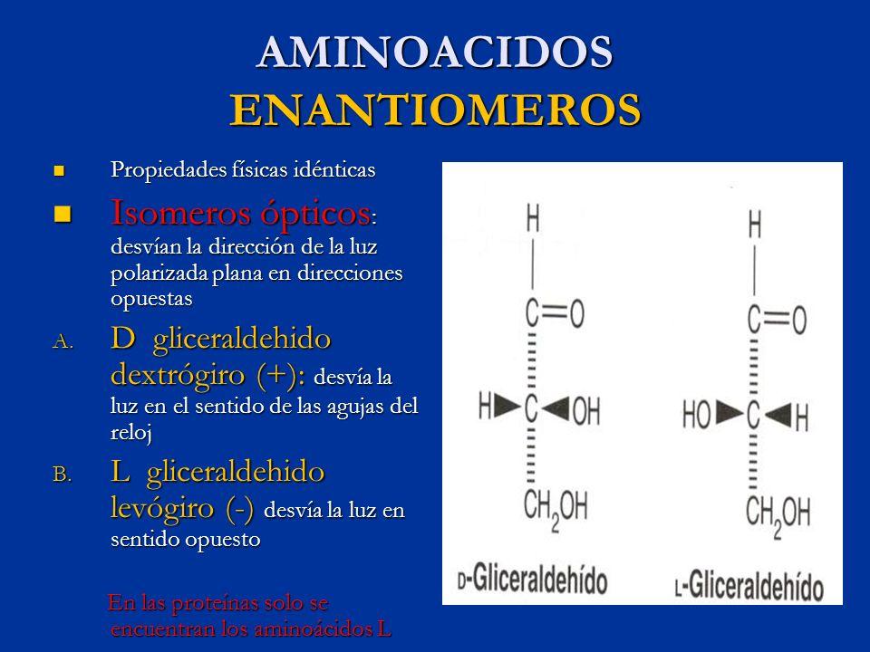 AMINOACIDOS ENANTIOMEROS Propiedades físicas idénticas Propiedades físicas idénticas Isomeros ópticos : desvían la dirección de la luz polarizada plan