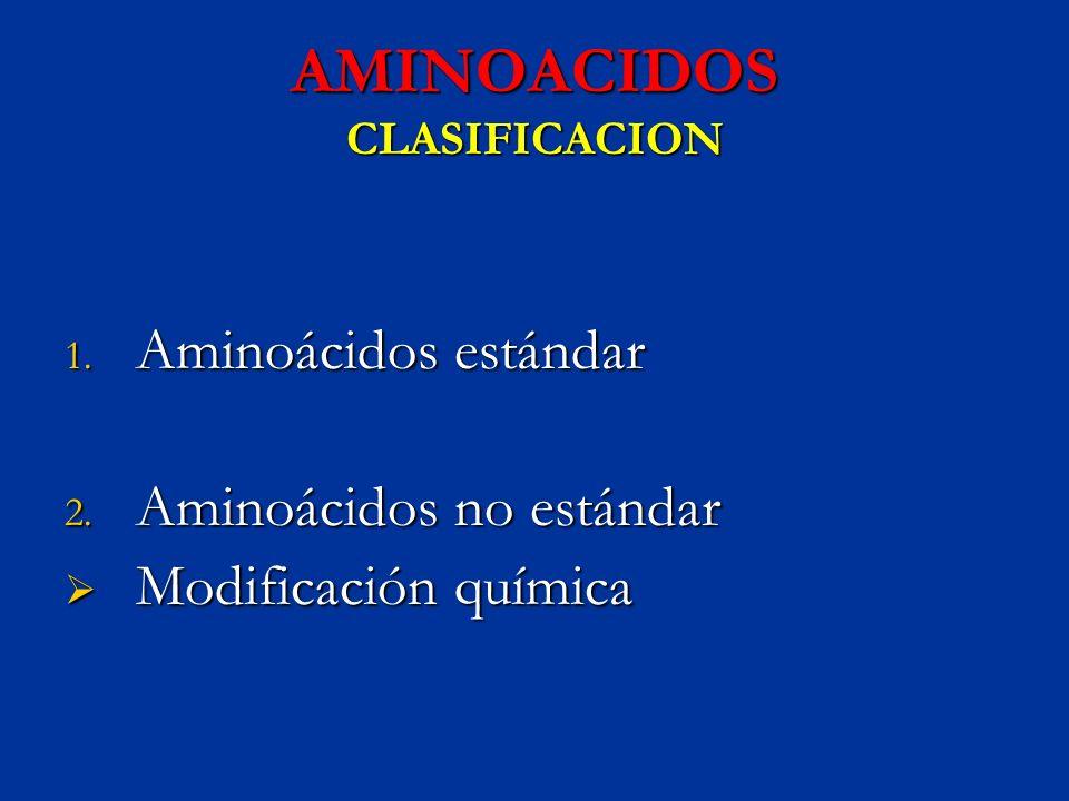 AMINOACIDOS CLASIFICACION 1. Aminoácidos estándar 2. Aminoácidos no estándar Modificación química Modificación química