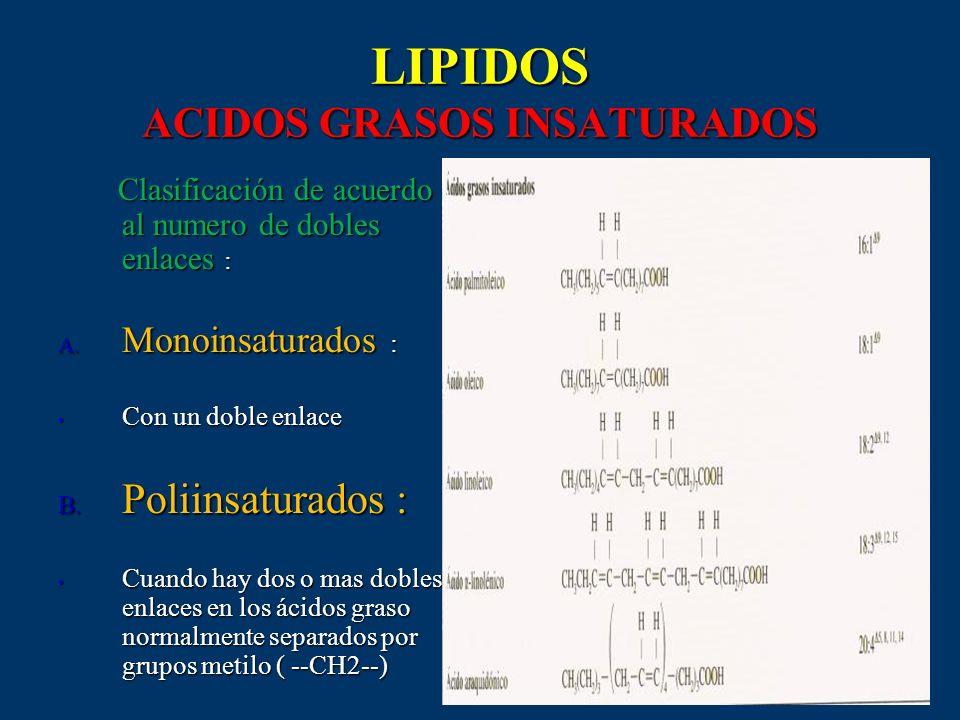 LIPIDOS ACIDOS GRASOS INSATURADOS Clasificación de acuerdo al numero de dobles enlaces : Clasificación de acuerdo al numero de dobles enlaces : A. Mon