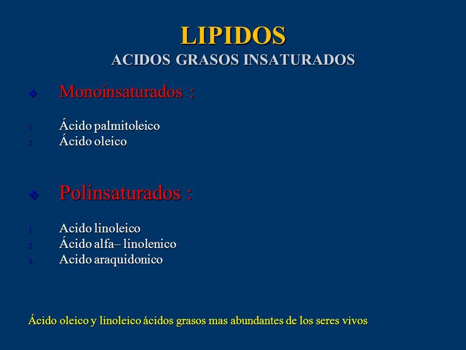 LIPIDOS ACIDOS GRASOS INSATURADOS Monoinsaturados : Monoinsaturados : 1. Ácido palmitoleico 2. Ácido oleico Polinsaturados : Polinsaturados : 1. Acido