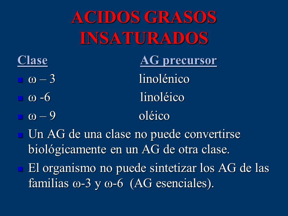 ACIDOS GRASOS INSATURADOS Clase AG precursor ω – 3 linolénico ω – 3 linolénico ω -6 linoléico ω -6 linoléico ω – 9 oléico ω – 9 oléico Un AG de una cl