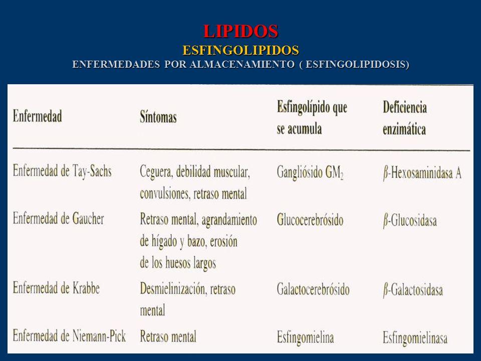 LIPIDOS ESFINGOLIPIDOS ENFERMEDADES POR ALMACENAMIENTO ( ESFINGOLIPIDOSIS)