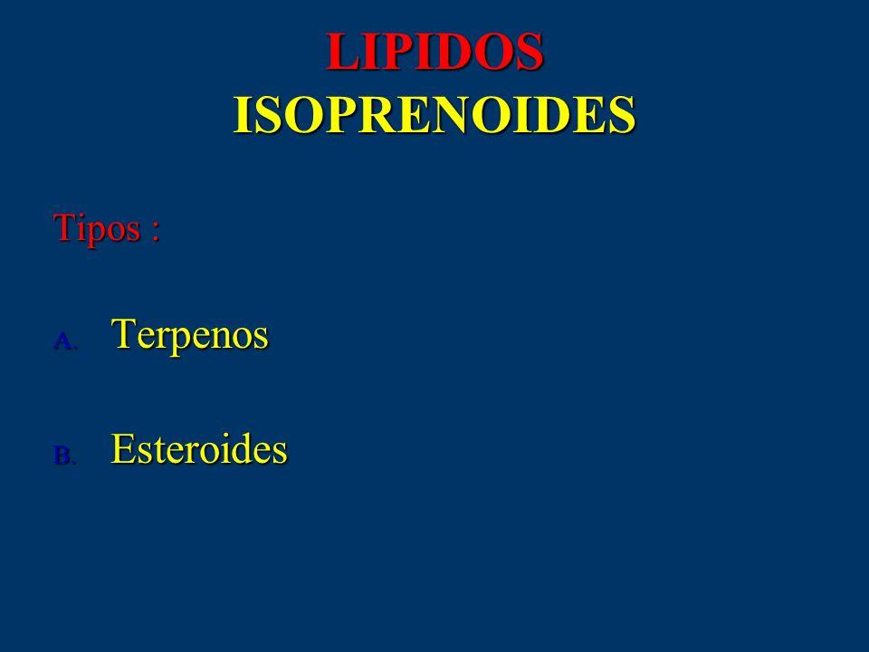 LIPIDOS ISOPRENOIDES Tipos : A. Terpenos B. Esteroides