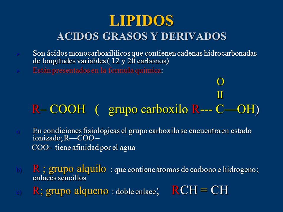 LIPIDOS ACIDOS GRASOS Y DERIVADOS Son ácidos monocarboxililicos que contienen cadenas hidrocarbonadas de longitudes variables ( 12 y 20 carbonos) Son
