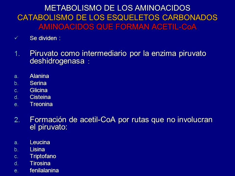 METABOLISMO DE LOS AMINOACIDOS CATABOLISMO DE LOS ESQUELETOS CARBONADOS AMINOACIDOS QUE FORMAN ACETIL-CoA Se dividen : Se dividen : 1. Piruvato como i
