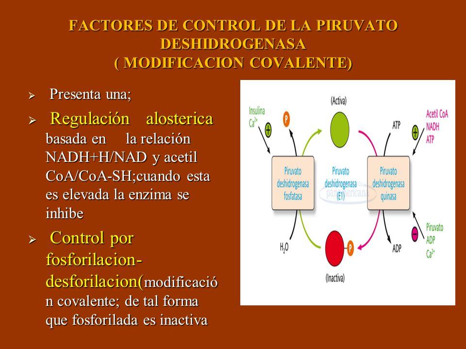 FACTORES DE CONTROL DE LA PIRUVATO DESHIDROGENASA ( MODIFICACION COVALENTE) Presenta una; Presenta una; Regulación alosterica basada en la relación NA