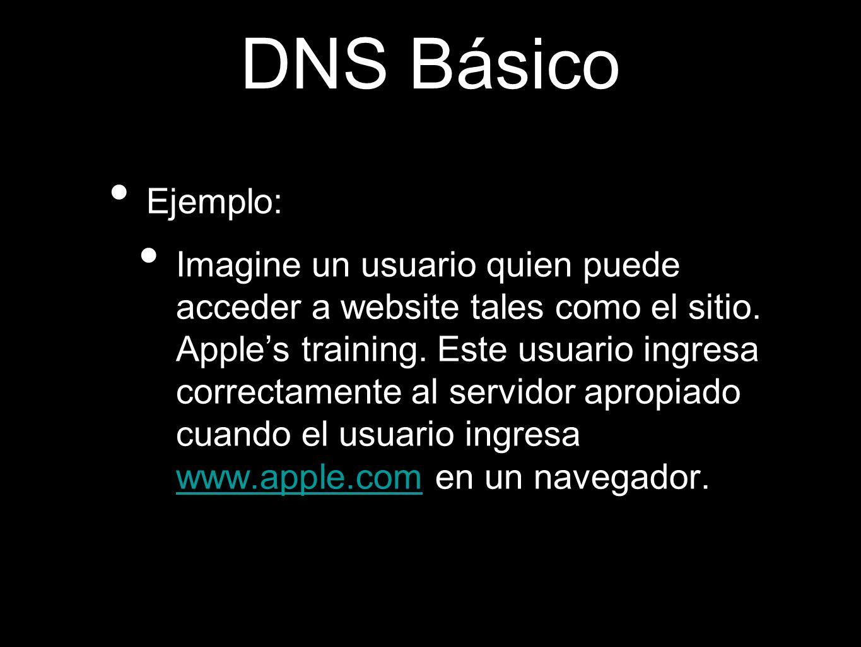 DNS Básico Ejemplo: Imagine un usuario quien puede acceder a website tales como el sitio. Apples training. Este usuario ingresa correctamente al servi