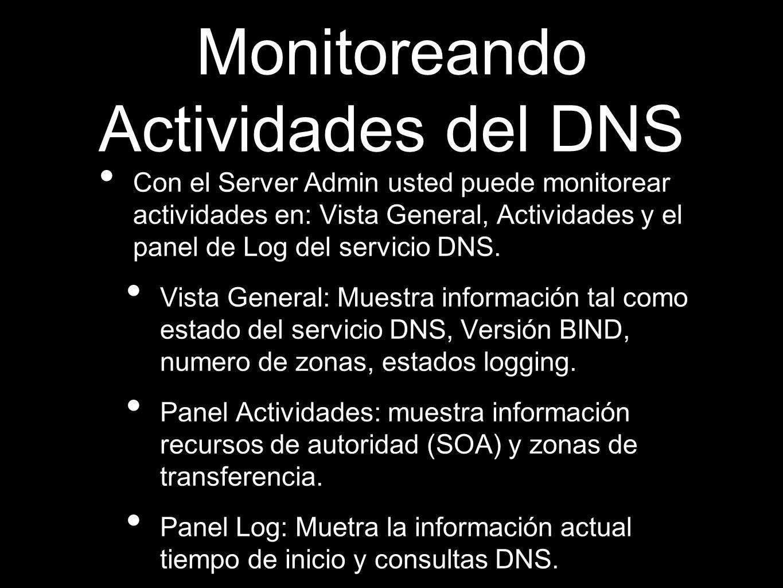 Monitoreando Actividades del DNS Con el Server Admin usted puede monitorear actividades en: Vista General, Actividades y el panel de Log del servicio